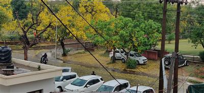 Heavy rain, hail storms hit Chandigarh.